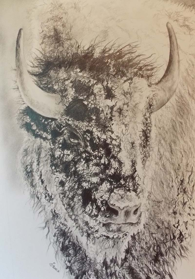 Buffalo Head Pencil
