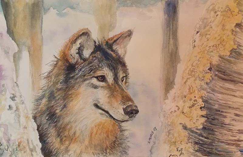 Wolf Watercolor