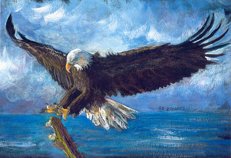 landing eagle drawing wwwimgkidcom the image kid has it