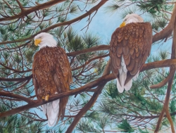 Eagles Pair